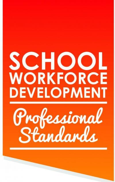 School Workforce Development - Professional Standards